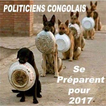 POLITICIEN CON GOLAIS